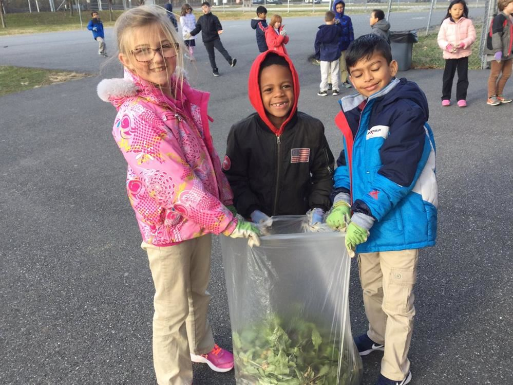 students harvesting school garden